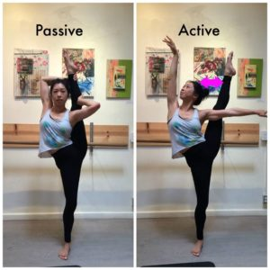 Passive and Active Flexibility