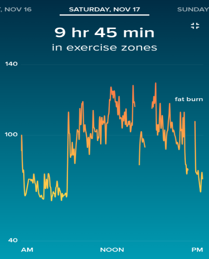 Heart Rate on Competition Day